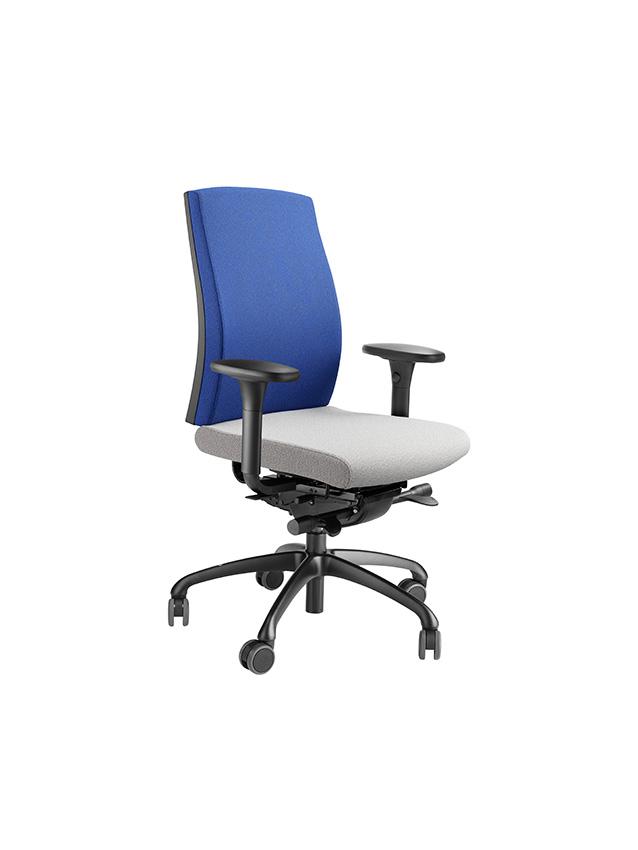 si ges ergonomiques mal de dos fauteuil loffler assise. Black Bedroom Furniture Sets. Home Design Ideas