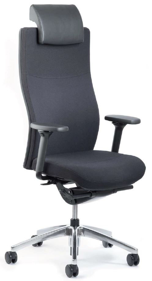 si ges ergonomiques mal de dos fauteuil 24 heures toro. Black Bedroom Furniture Sets. Home Design Ideas