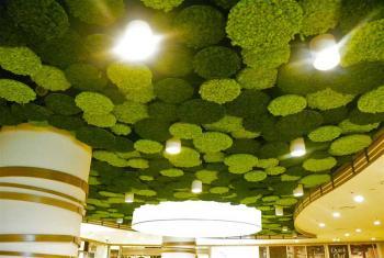 Cloisons Acoustiques pour Plafond