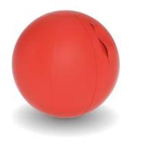 Ballon de Fitness Tapissé