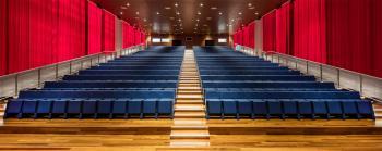 Fauteuils Auditorium L213
